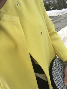 YellowCoat2